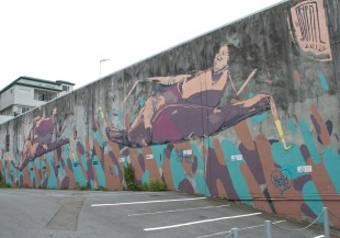 Mural by Drypnz and Pie Rats / between Alpha & Tennyson Streets / 2012