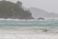 surfer at woolley's bay