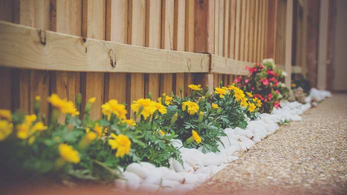 Top 10 Landscaping Services in Singapore