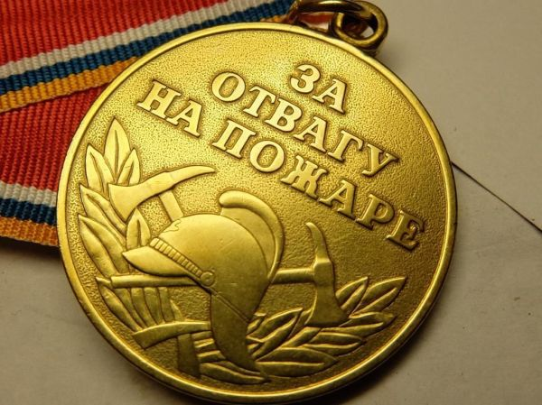 Жители Тальменского района награждены медалью «За отвагу ...