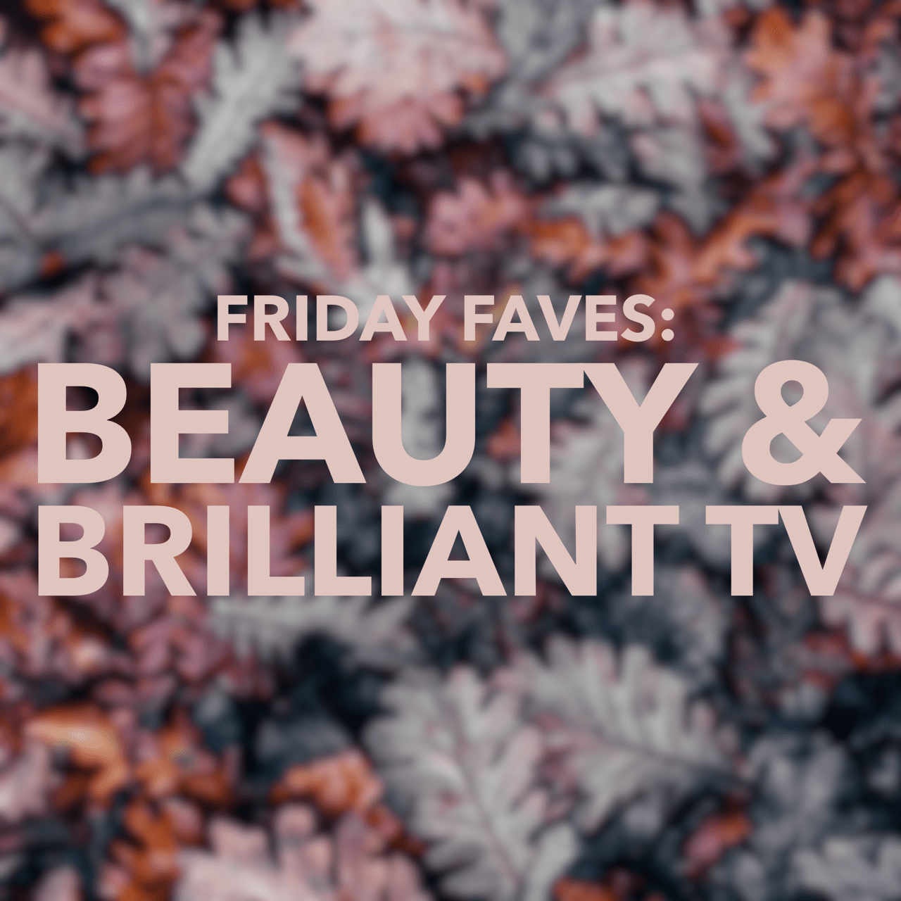 Friday Faves Talonted Lex