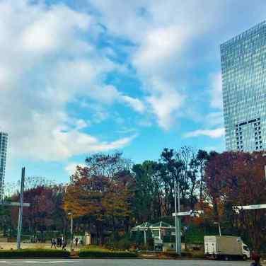 新宿中央公園・都庁前駅