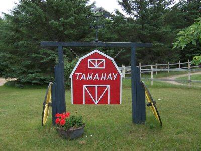Tamahay Camp
