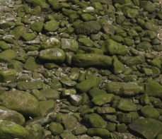 A few rocks...
