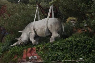 A rhino in strops at Portofino