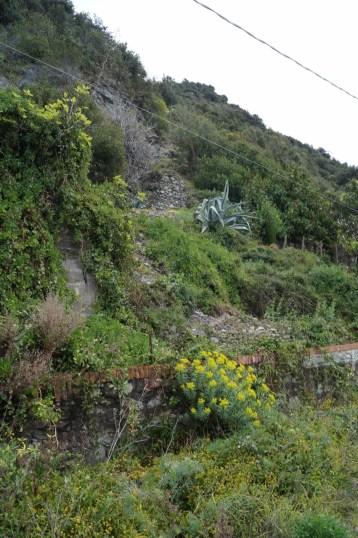 Our alternate hike on shingle...