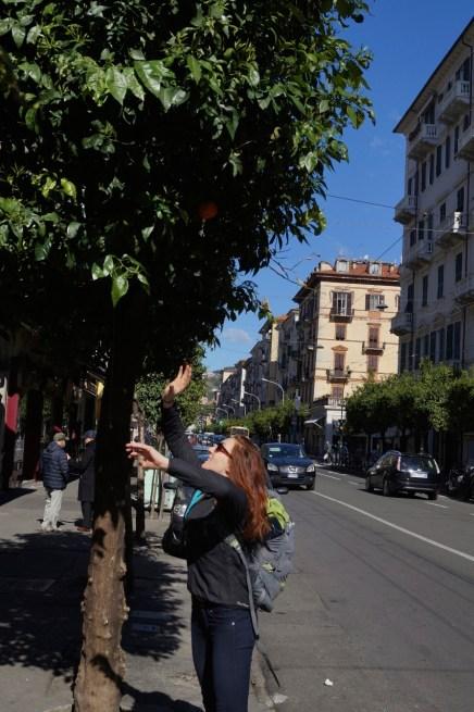 Jumping for oranges in La Spezia