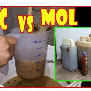 Pupuk Organik Cair – Apa Saja Kegunaan MOL dan POC