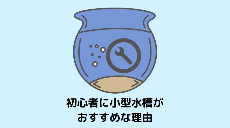 小型水槽にするべき