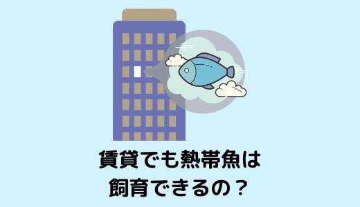 【小型水槽なら問題なし】マンション・賃貸でも熱帯魚は飼育できるの?