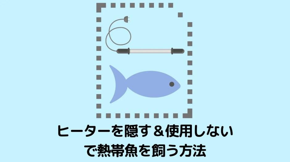 ヒーターを目立たせない&使わないで熱帯魚を飼育する方法