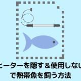 【ヒーター邪魔じゃない?】ヒーターを目立たせない&使わないで熱帯魚を飼育する方法