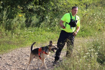 Day 3 of Search for Jesse Rex Farber, Sharp Mountain, Tamaqua, 8-15-2015 (89)