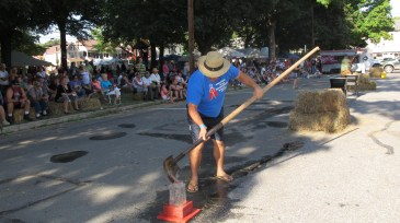Redneck Festival 2015, Weissport, 9-6-2015 (49)