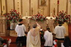 Little Flower Shower of Roses, Our Lady of Mount Carmel Church, Nesquehoning (179)