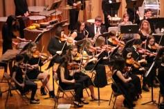 Holiday Concert via Gabriel Youth Orchestra, Lengel Auditorium, Pottsville MS (16)