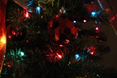 Tree Festival, Voting, Tamaqua Community Arts Center, Tamaqua, 12-4-2015 (73)