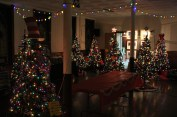 Tree Festival, Voting, Tamaqua Community Arts Center, Tamaqua, 12-4-2015 (99)