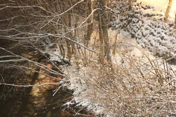 snow-photos-little-schuylkill-river-tamaqua-area-1-14-2017-11