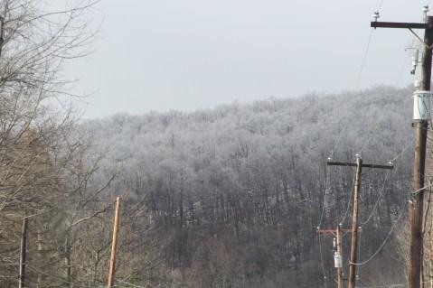 winter-wonderland-ice-on-trees-along-sr54-and-interstate-81-barnesville-1-24-2017-5