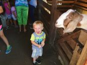 Brayden was stoked on the petting/feeding zoo.
