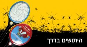 mosquito katan