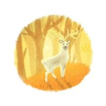 Deer of autumn light