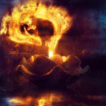 Dragon Candlelight