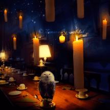 Gryffindor Banquet2