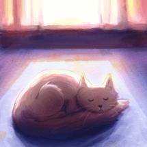 Kitty sunshine4