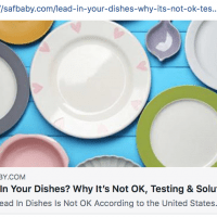 SafBaby.com Article Lead In Dishes