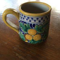 Diane Cuernavaca Mexico Mug Lead Safe Mama 2