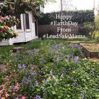 Happy Earth Day 2019 LeadSafeMama