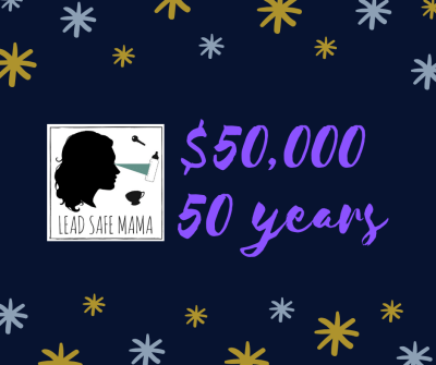 """November 2019 Financial Update: The """"$50,000 to Celebrate 50 Years"""" Lead Safe Mama 2019 Birthday Challenge..."""