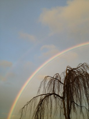 Everett, WA Rainbow, digital photography, prices starting at $25.00