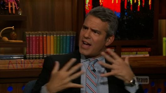 Bethenny Frankel Interviews Andy Cohen About The Housewives