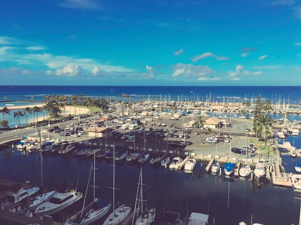 This WAS the view from Jax's window in Hawaii