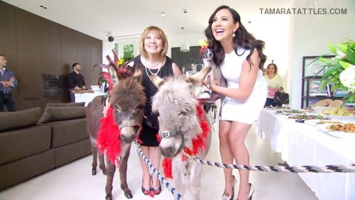 Real Housewives of Melbourne: It's On Like Donkey Kong!