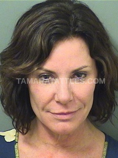 Countess Luann In Handcuffs