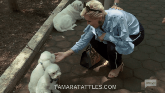 Mexican Dynasties Recap Raquel with dogs