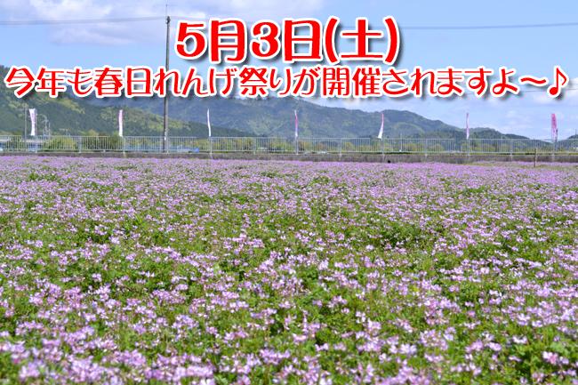 2014れんげ祭002