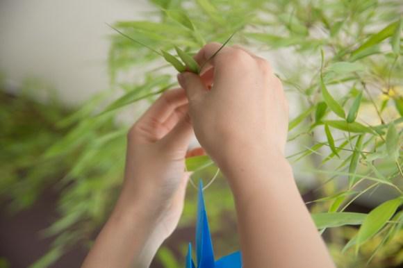 tanabata2015 (3)