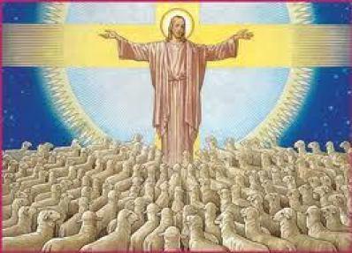 jesus-el-buen-pastor-hay-otras-ovejas