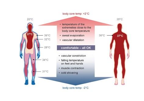 Thermoregulation Basics in CrossFit Athletes