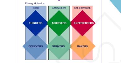 values attitudes and lifestyle