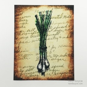Spring Onions, Kitchen Series