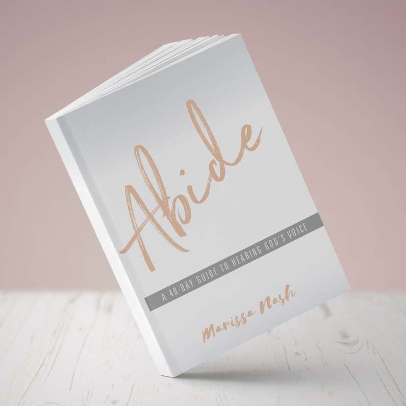 Cover_Abide_book_cover_square