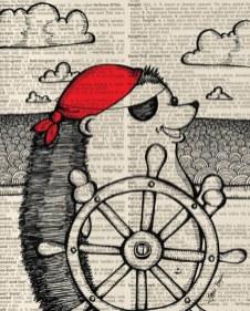 Hedgehog pirate