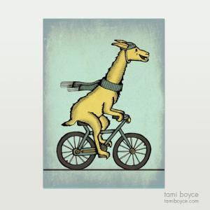 Llama on Bicycle