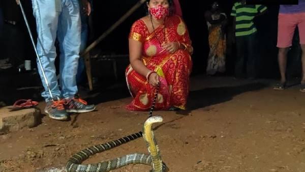 8 फीट का राजनगम भी है जुजुबी.. सांपों को पकड़ने वाली ओडिशा की लड़की!